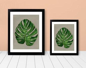 Framed Print - Monstera Leaf