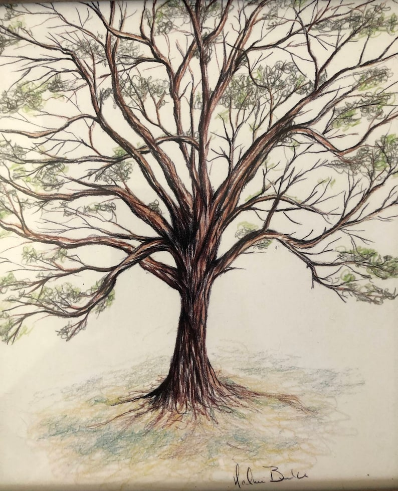 Colored pencil Tree with wood frame