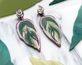 Calathea Leaf Statement Drop Earrings : Green, Pink & Rose Gold | Laser Cut Engraved Perspex Acrylic Studs | Tropical Leaf Dangle Earrings