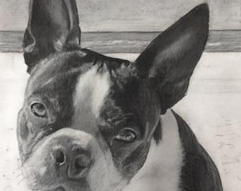 Custom Pet Portrait Drawing, Custom Charcoal Pet Portrait, Portrait from Photo