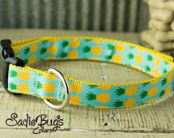 Sadie Bugs Collars