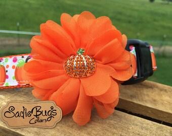 Pumpkin flower collar attachment - Halloween fall dog collar