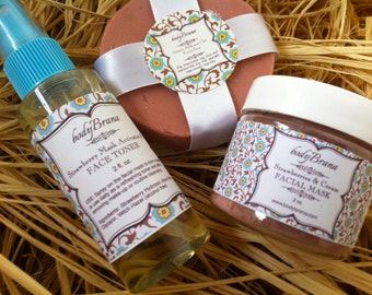 Pure and Organic Skincare-- Facial Gift Pack -- Mask, Soap, Toner