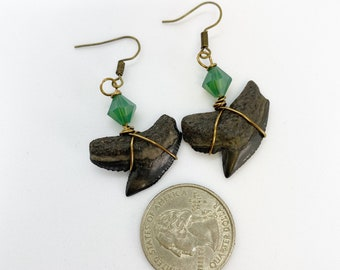 Wire wrapped prehistoric tiger sharks teeth earrings found on Manasota Key Florida with Swarovski crystals