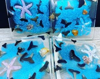 Set of four epoxy resin prehistoric sharks teeth coasters
