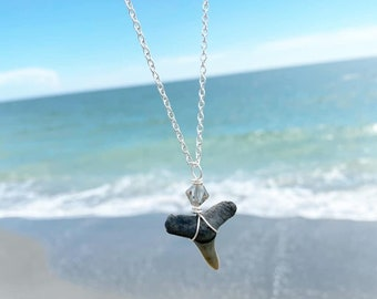 Prehistoric sharks tooth from Manasota key Florida wire wrapped on 18 inch chain