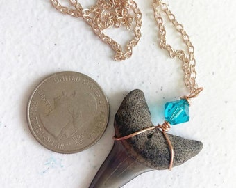Prehistoric Mako sharks tooth wire wrapped with Swarovski crystal on 18 inch rose stainless steel chain