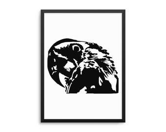 Paranoid Parrot Funny Bird Meme Poster