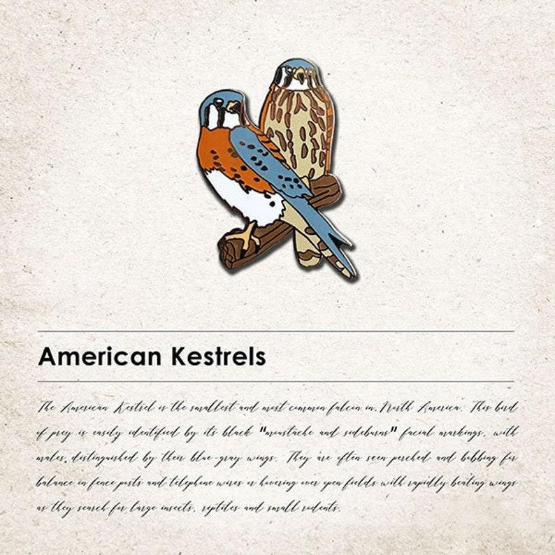 American Kestrels Spirit Animal Pin image 0