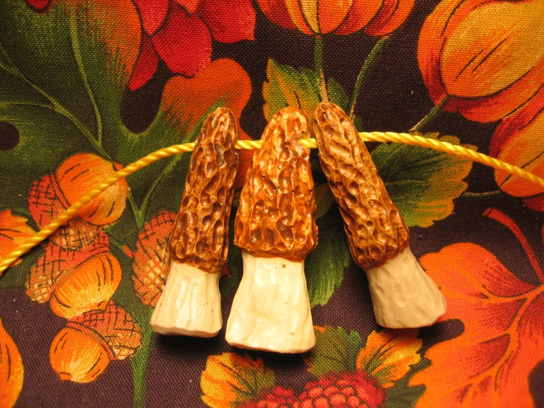 Surprising Hand Carved Shed Deer Antler Miniature Set Of Three Morel Mushroom Reproduction Beads Beading Supplies Craft Supplies Jewelry Morelmushrooms Download Free Architecture Designs Barepgrimeyleaguecom