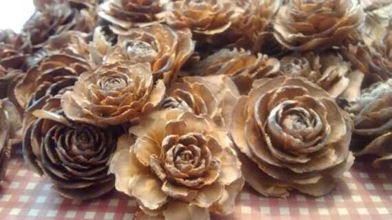 12 Cedar Cones Gorgeous Rose Shape Fir//Pine Cones Craft//Wedding//Pot Pourri