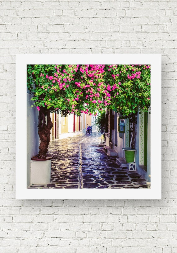 Paros Greece Print Pink Flower Print Greek Wall Art Etsy