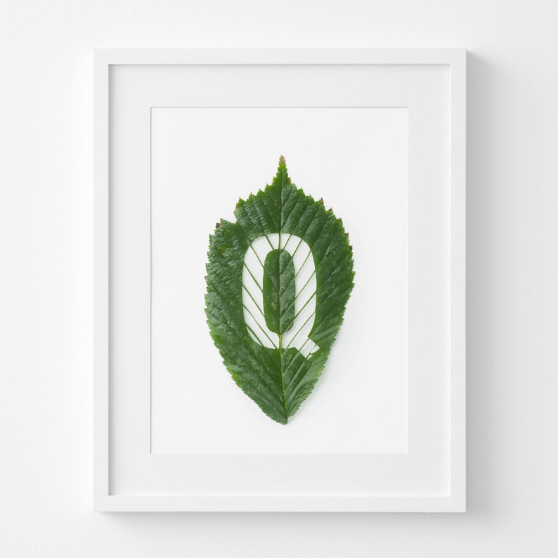 picture relating to Letter Q Printable named First Letter Q Printable Leaf Artwork Letter Q carved out of a Hornbeam Leaf through hand Present for Mother nature Spouse