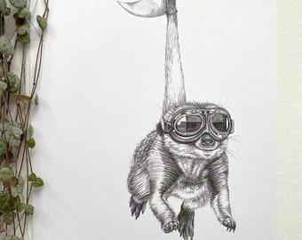 Poster A4 size   Meerkat