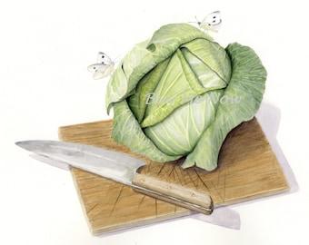 Cabbage Watercolor Stillife