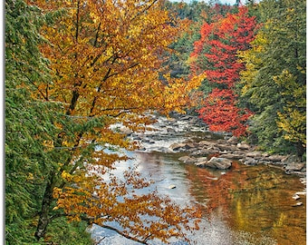 Autumn on the Blackwater River, West Virginia State Park, Davis, WV
