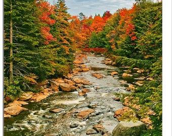 Autumn Day, Blackwater River, West Virginia State Park, Davis, WV