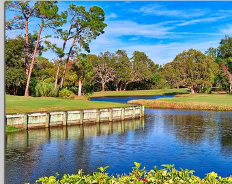 Blue skies and blue water at Innisbrook in Palm Harbor, Florida