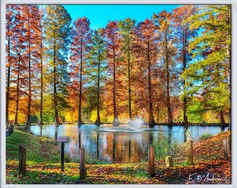 Pond and Trees, Ferncliff Cemetery and Arboretum, Springfield Ohio
