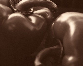 Peppers in Sepia