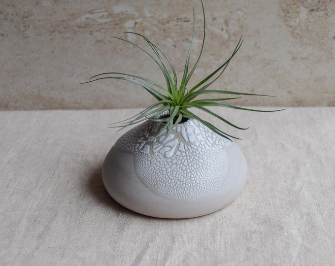 Air Plant Vase, air plant holder, crackle vase, white vase, organic vase, textured vase, whimsical vase, earthy vase, small planter, ap5