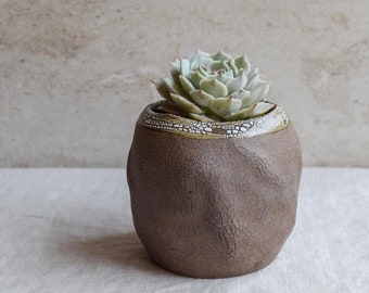 Ceramic planter, succulent planter, organic planter, earthy, tree texture, textured planter, indoor planter, whimsical planter, SOP1