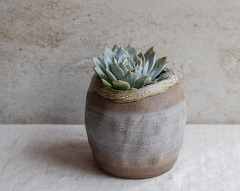 Ceramic planter, succulent planter, organic planter, earthy, tree texture, textured planter, indoor planter, whimsical planter, SOP2