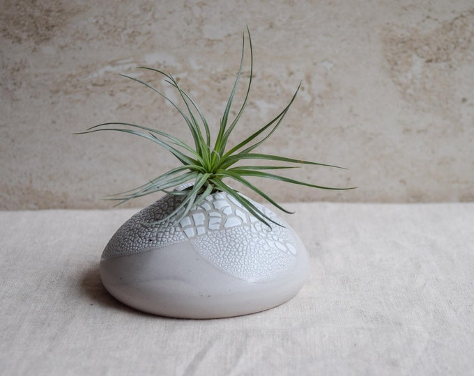 Air Plant Vase, air plant holder, crackle vase, white vase, organic vase, textured vase, whimsical vase, earthy vase, small planter, ap4