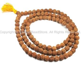 108 beads 8mm Natural Rudraksha Seed Beads - Nepalese Tibetan Rudraksha Seed Prayer Mala Beads- TibetanBeadStore Mala Making Supplies - PB66