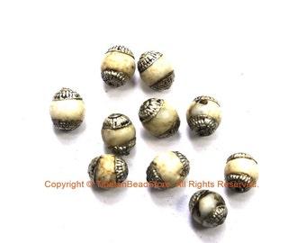 2 BEADS Small Ethnic Tibetan Naga Conch Shell Beads with Tibetan Silver Caps - Tribal Beads - Handmade Beads - TibetanBeadStore - B3451-2