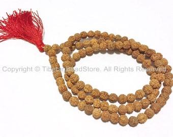 108 beads - 7mm Natural Rudraksha Seed Beads - Nepalese Tibetan Rudraksha Seed Prayer Mala Beads by TibetanBeadStore - PB65
