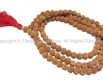 108 beads - 8mm Natural Rudraksha Seed Beads - Nepalese Tibetan Rudraksha Seed Prayer Mala Beads - Mala Making Supplies - PB66R