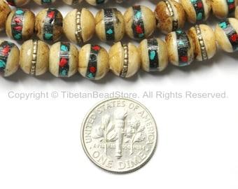 10 BEADS 8mm Tibetan Antiqued Bone Beads with Brass, Turquoise & Coral Inlays - Tibetan Beads - Mala Making Supply - LPB21-10
