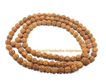 7mm Natural Rudraksha Beads from Nepal - Natural Seed Beads - Yoga Mala - Rudraksha Seed Mala Beads - 108 Rudraksha Beads - PB201