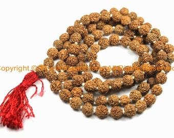 108 beads - 10-11mm Natural Rudraksha Seed Beads - Nepalese Rudraksha Seed Prayer Mala Beads - Mala Making Supplies - PB146