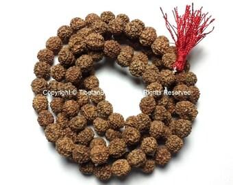 108 beads - 9mm-10mm Natural Rudraksha Seed Beads - Nepalese Tibetan Rudraksha Seed Prayer Mala Beads - Mala Making Supplies - PB81B