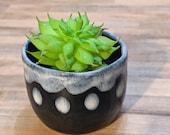 Small Black Ceramic Planter with White Accents- Mid Fire Succulent Planter, Small Ceramic Cup