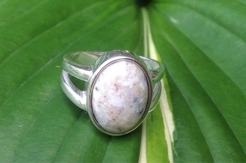 Pet Cremation Pet Memorial Jewelry Pet Jewelry Pet Ash Ring Sterling Silver Cremation Ring