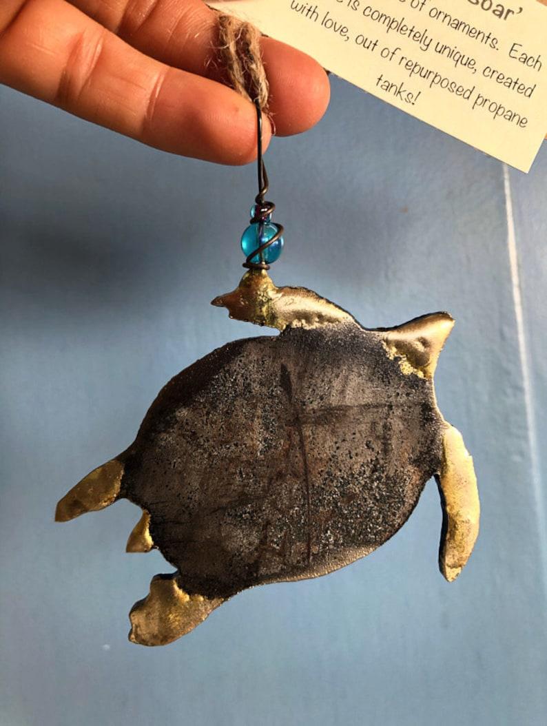 sea turtle image 0