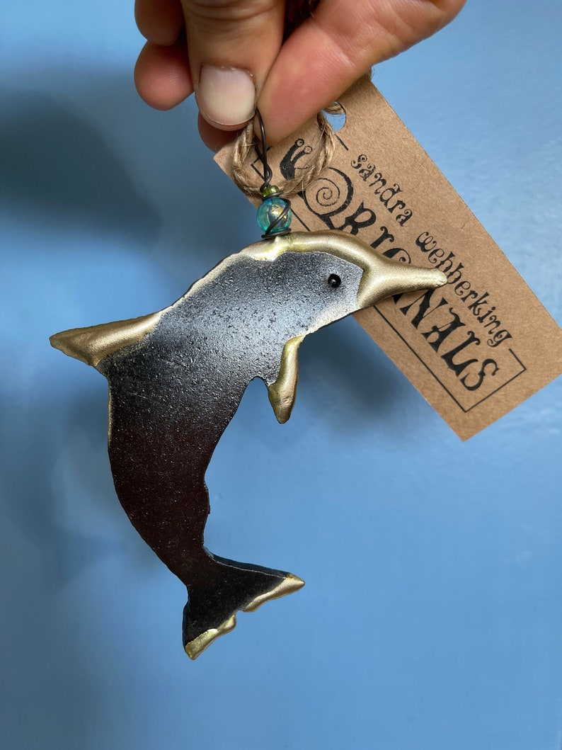 Dolphin image 1
