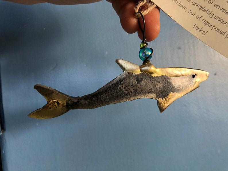 Shark image 0