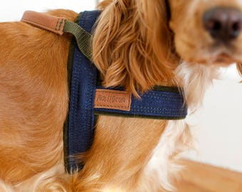 SET, Dog Harness and Leash Denim, MissFlo, Leather detail, Handmade, made to measure, MissFlo.
