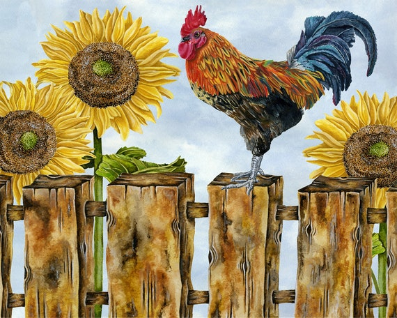country style rooster farm barn sunflowers art print