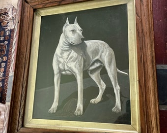 Best in Show AKC 1907 Champion Painting, Oil on Board, White Bull Terrier, Striking!