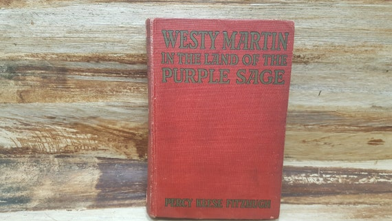 Westy Martin In The Land Of Purple Sage 1929 Percy Keese Etsy