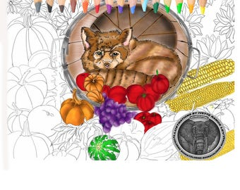 Thanksgiving.Fox.  Pumpkin. Adult Colouring Page. Coloring Page Download.