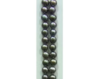 4-4.5mm Button Black Freshwater Pearl Loose 12x Pair-