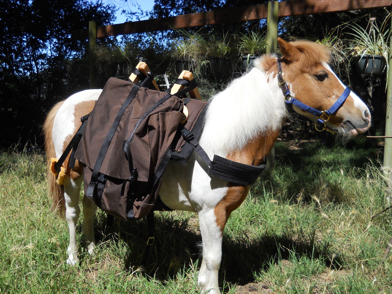 Mini Horse Pack Saddle Large Adjustable