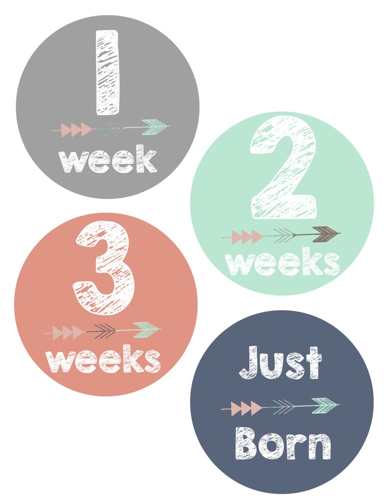 First Year 12 Month Growth Sticker Baby Shower Gift Baby Girl Baby Photo Props Baby Month Stickers Baby Girl Monthly Stickers Set
