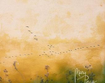 Birds Photo, Geese formation, Light Break, Skylight, Yellow Sky, Golden tones with Green.
